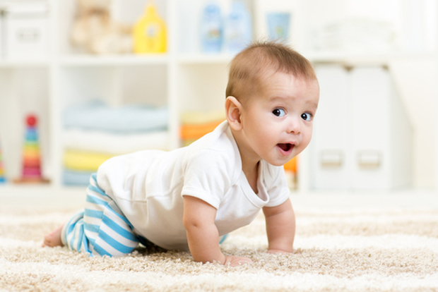 「ハイハイ 赤ちゃん」の画像検索結果
